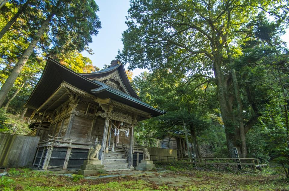 気比神社-拝殿